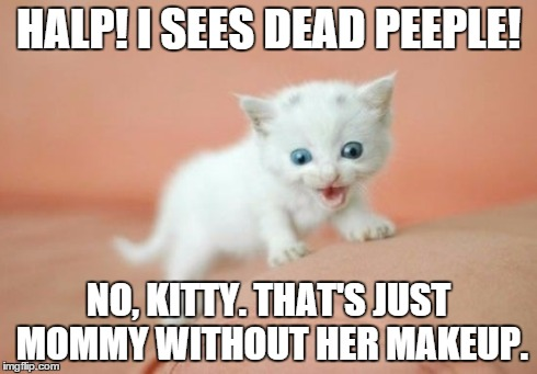 kitty sees dead peeples! | HALP! I SEES DEAD PEEPLE! NO, KITTY. THAT'S JUST MOMMY WITHOUT HER MAKEUP. | image tagged in kitty,i see dead people | made w/ Imgflip meme maker