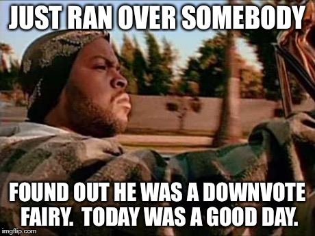 ice cube | JUST RAN OVER SOMEBODY FOUND OUT HE WAS A DOWNVOTE FAIRY.  TODAY WAS A GOOD DAY. | image tagged in ice cube | made w/ Imgflip meme maker