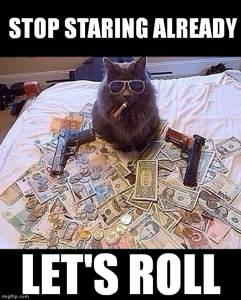 STOP STARING ALREADY LET'S ROLL | image tagged in bad cat | made w/ Imgflip meme maker