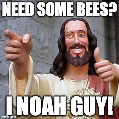NEED SOME BEES? I NOAH GUY! | made w/ Imgflip meme maker