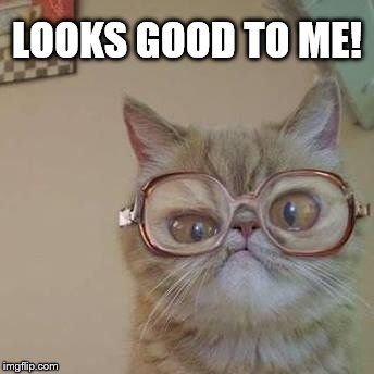 Funny Cat with Glasses | LOOKS GOOD TO ME! | image tagged in funny cat with glasses | made w/ Imgflip meme maker