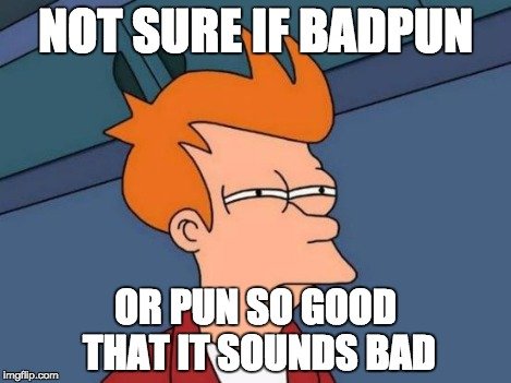 Futurama Fry Meme | NOT SURE IF BADPUN OR PUN SO GOOD THAT IT SOUNDS BAD | image tagged in memes,futurama fry | made w/ Imgflip meme maker