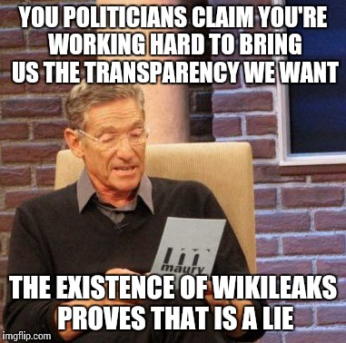 Maury Lie Detector Meme | YOU POLITICIANS CLAIM YOU'RE WORKING HARD TO BRING US THE TRANSPARENCY WE WANT THE EXISTENCE OF WIKILEAKS PROVES THAT IS A LIE | image tagged in memes,maury lie detector | made w/ Imgflip meme maker