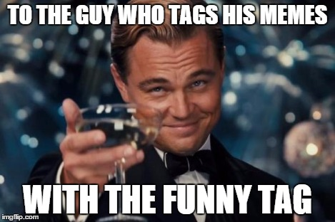 Leonardo Dicaprio Cheers Meme | TO THE GUY WHO TAGS HIS MEMES WITH THE FUNNY TAG | image tagged in memes,leonardo dicaprio cheers | made w/ Imgflip meme maker