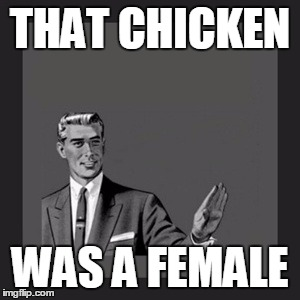 Kill Yourself Guy Meme | THAT CHICKEN WAS A FEMALE | image tagged in memes,kill yourself guy | made w/ Imgflip meme maker
