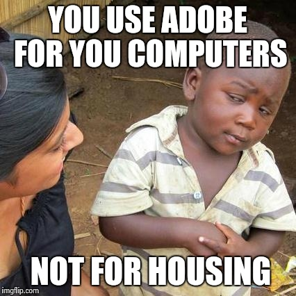 Third World Skeptical Kid Meme | YOU USE ADOBE FOR YOU COMPUTERS NOT FOR HOUSING | image tagged in memes,third world skeptical kid | made w/ Imgflip meme maker