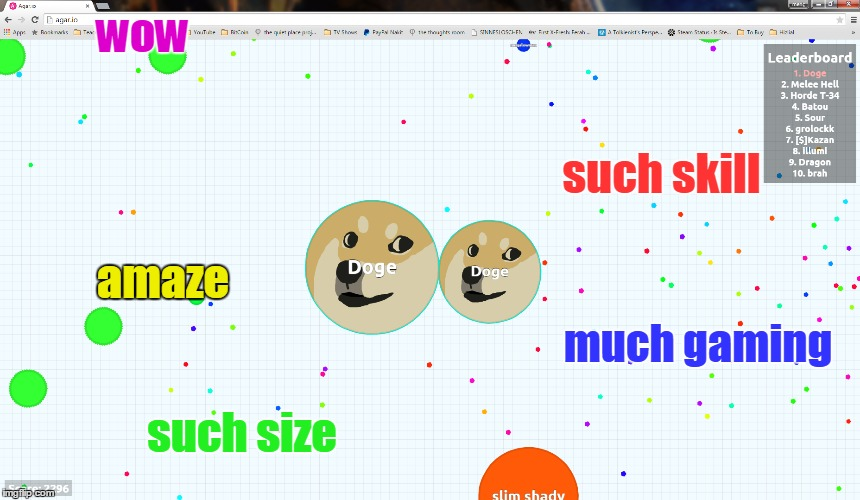 Doge is the first! | wow such skill much gaming amaze such size | image tagged in doge,9gag,memes,agar,agario | made w/ Imgflip meme maker