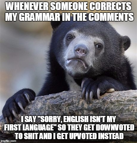 "Confession Bear Meme | WHENEVER SOMEONE CORRECTS MY GRAMMAR IN THE COMMENTS I SAY ""SORRY, ENGLISH ISN'T MY FIRST LANGUAGE"" SO THEY GET DOWNVOTED TO SHIT AND I GET  
