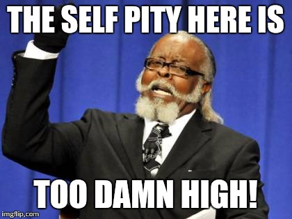 Too Damn High Meme | THE SELF PITY HERE IS TOO DAMN HIGH! | image tagged in memes,too damn high | made w/ Imgflip meme maker