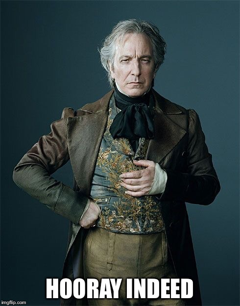 Hooray indeed | HOORAY INDEED | image tagged in sarcastic,hooray indeed,alan rickman | made w/ Imgflip meme maker