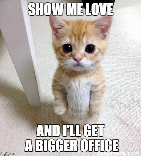 Cute Cat Meme Imgflip