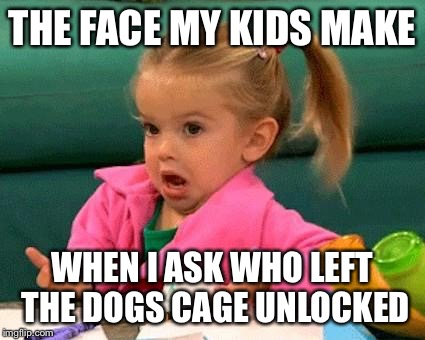 I don't know (Good Luck Charlie) | THE FACE MY KIDS MAKE WHEN I ASK WHO LEFT THE DOGS CAGE UNLOCKED | image tagged in i don't know good luck charlie | made w/ Imgflip meme maker