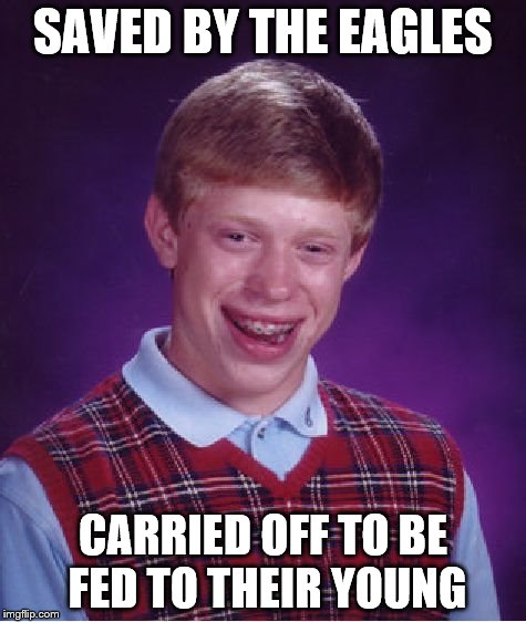 Bad Luck Brian Meme | SAVED BY THE EAGLES CARRIED OFF TO BE FED TO THEIR YOUNG | image tagged in memes,bad luck brian | made w/ Imgflip meme maker