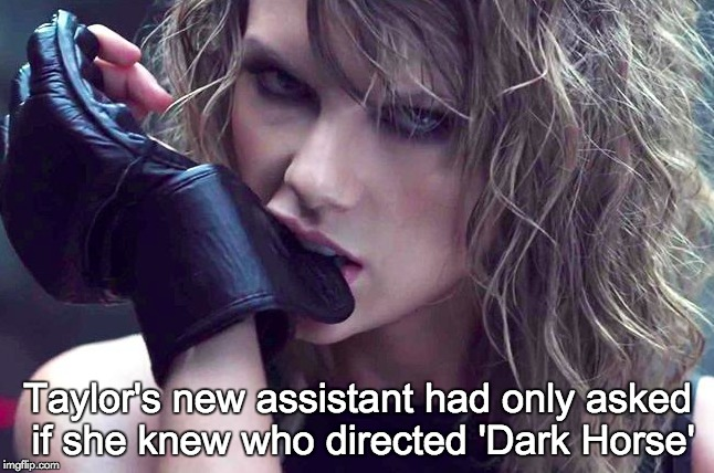 What did you say? | Taylor's new assistant had only asked if she knew who directed 'Dark Horse' | image tagged in taylor swift,taylor swift glare,katy perry,bad blood,singer,beatdown | made w/ Imgflip meme maker