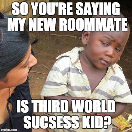 Third World Skeptical Kid Meme | SO YOU'RE SAYING MY NEW ROOMMATE IS THIRD WORLD SUCSESS KID? | image tagged in memes,third world skeptical kid | made w/ Imgflip meme maker