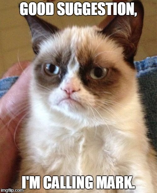 Grumpy Cat Meme | GOOD SUGGESTION, I'M CALLING MARK. | image tagged in memes,grumpy cat | made w/ Imgflip meme maker