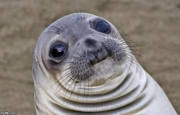 Awkward Moment Sealion Meme | O | image tagged in memes,awkward moment sealion | made w/ Imgflip meme maker