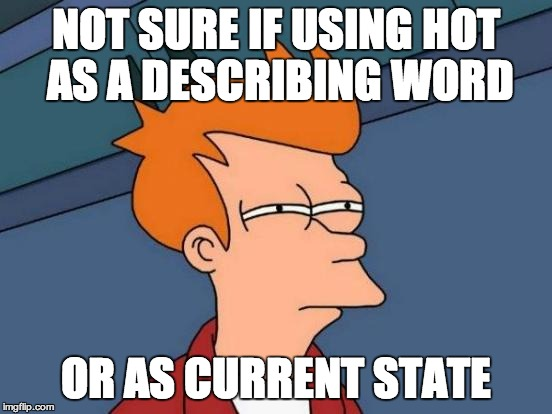 Futurama Fry Meme | NOT SURE IF USING HOT AS A DESCRIBING WORD OR AS CURRENT STATE | image tagged in memes,futurama fry | made w/ Imgflip meme maker