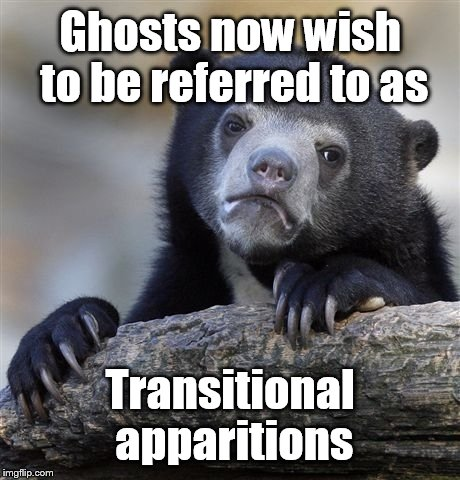Confession Bear Meme | Ghosts now wish to be referred to as Transitional apparitions | image tagged in memes,confession bear | made w/ Imgflip meme maker