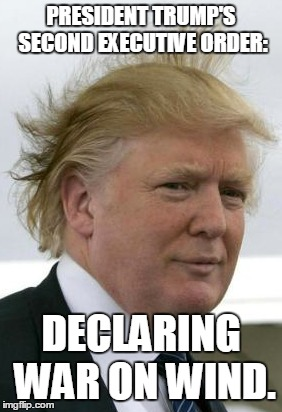 Trump's war on wind | PRESIDENT TRUMP'S SECOND EXECUTIVE ORDER: DECLARING WAR ON WIND. | image tagged in trump,donald trump,wind,war | made w/ Imgflip meme maker