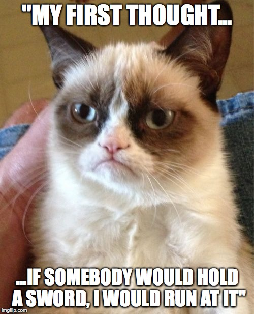 "Grumpy Cat Meme | ""MY FIRST THOUGHT... ...IF SOMEBODY WOULD HOLD A SWORD, I WOULD RUN AT IT"" 