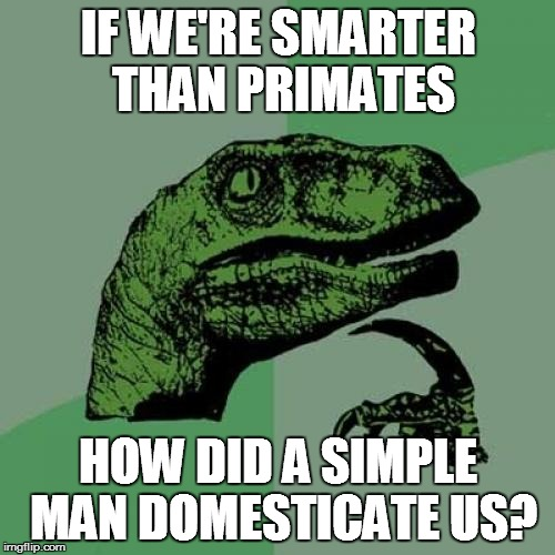 Philosoraptor Meme | IF WE'RE SMARTER THAN PRIMATES HOW DID A SIMPLE MAN DOMESTICATE US? | image tagged in memes,philosoraptor | made w/ Imgflip meme maker