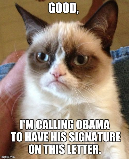 Grumpy Cat Meme | GOOD, I'M CALLING OBAMA TO HAVE HIS SIGNATURE ON THIS LETTER. | image tagged in memes,grumpy cat | made w/ Imgflip meme maker