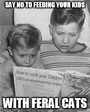 SAY NO TO FEEDING YOUR KIDS WITH FERAL CATS | image tagged in cookbook | made w/ Imgflip meme maker