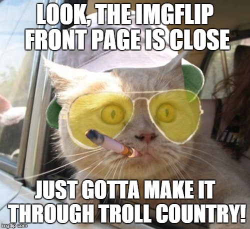 Fear And Loathing Cat | LOOK, THE IMGFLIP FRONT PAGE IS CLOSE JUST GOTTA MAKE IT THROUGH TROLL COUNTRY! | image tagged in memes,fear and loathing cat | made w/ Imgflip meme maker