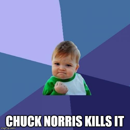 Success Kid Meme | CHUCK NORRIS KILLS IT | image tagged in memes,success kid | made w/ Imgflip meme maker