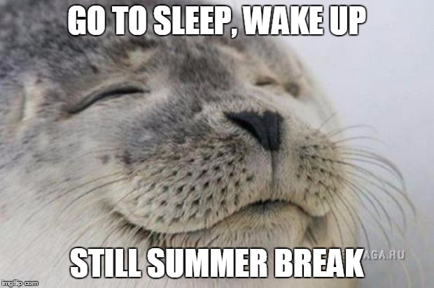Happy Seal | GO TO SLEEP, WAKE UP STILL SUMMER BREAK | image tagged in happy seal | made w/ Imgflip meme maker