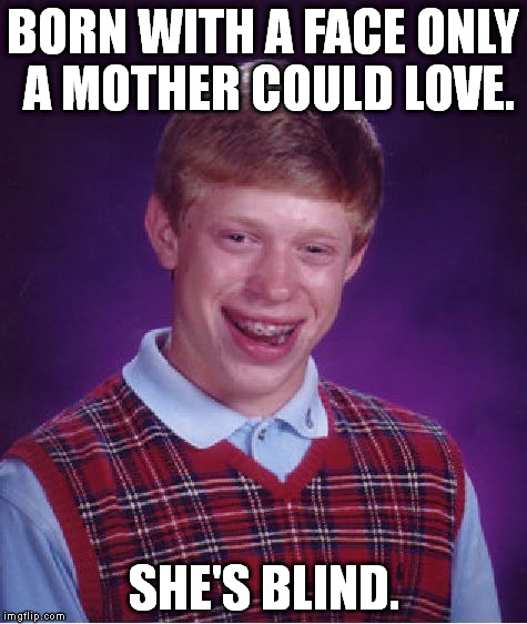 Sorry Brian. :( | BORN WITH A FACE ONLY A MOTHER COULD LOVE. SHE'S BLIND. | image tagged in memes,bad luck brian | made w/ Imgflip meme maker