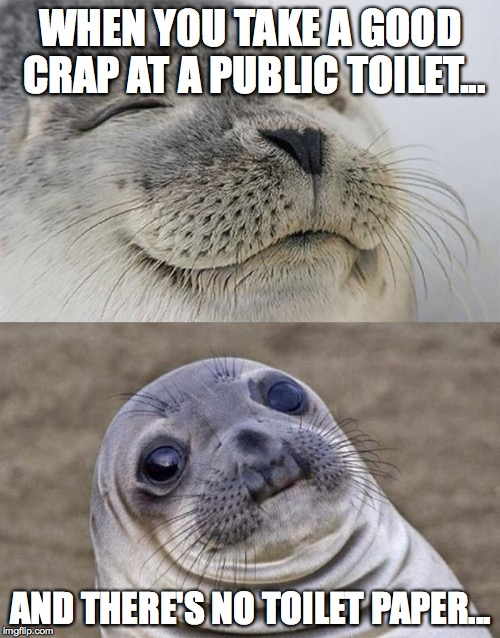 Short Satisfaction VS Truth Meme | WHEN Y0U TAKE A GOOD CRAP AT A PUBLIC TOILET... AND THERE'S NO TOILET PAPER... | image tagged in memes,short satisfaction vs truth | made w/ Imgflip meme maker