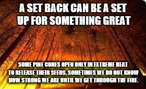Forest fire | A SET BACK CAN BE A SET UP FOR SOMETHING GREAT SOME PINE CONES OPEN ONLY IN EXTREME HEAT TO RELEASE THEIR SEEDS. SOMETIMES WE DO NOT KNOW HO | image tagged in forest fire | made w/ Imgflip meme maker