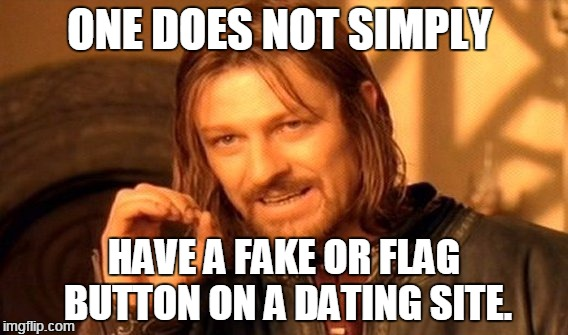 One Does Not Simply Meme | ONE DOES NOT SIMPLY HAVE A FAKE OR FLAG BUTTON ON A DATING SITE. | image tagged in memes,one does not simply | made w/ Imgflip meme maker