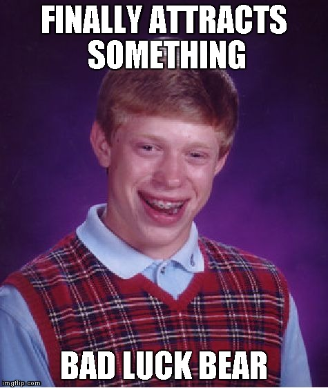 Bad Luck Brian Meme | FINALLY ATTRACTS SOMETHING BAD LUCK BEAR | image tagged in memes,bad luck brian | made w/ Imgflip meme maker