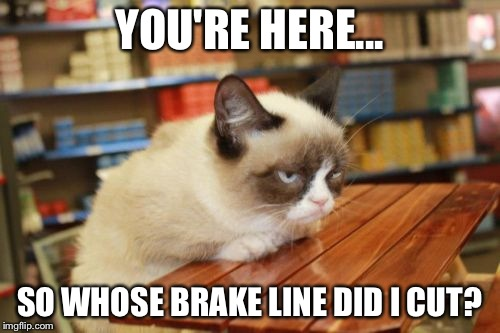 Grumpy Cat Table | YOU'RE HERE... SO WHOSE BRAKE LINE DID I CUT? | image tagged in memes,grumpy cat table | made w/ Imgflip meme maker