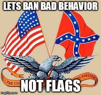 LETS BAN BAD BEHAVIOR NOT FLAGS | image tagged in freedom,american flag,political correctnes | made w/ Imgflip meme maker