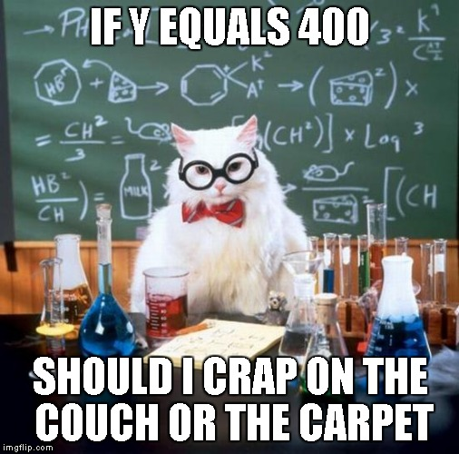 Chemistry Cat | IF Y EQUALS 400 SHOULD I CRAP ON THE COUCH OR THE CARPET | image tagged in memes,chemistry cat | made w/ Imgflip meme maker