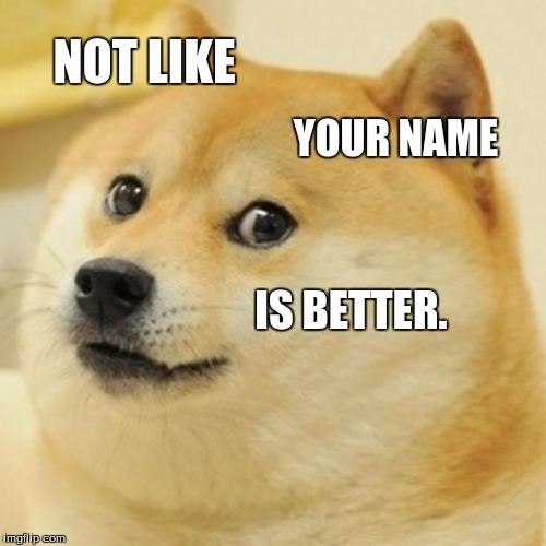 Doge Meme | NOT LIKE YOUR NAME IS BETTER. | image tagged in memes,doge | made w/ Imgflip meme maker