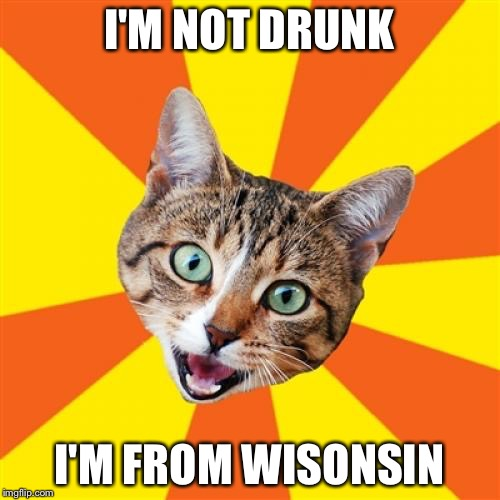 Bad Advice Cat Meme | I'M NOT DRUNK I'M FROM WISONSIN | image tagged in memes,bad advice cat | made w/ Imgflip meme maker