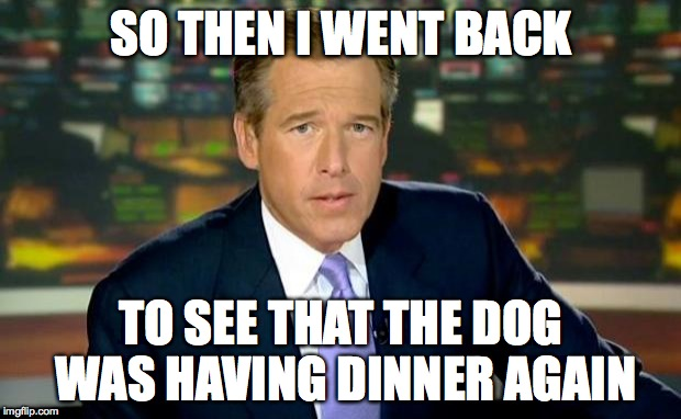 Brian Williams Was There Meme | SO THEN I WENT BACK TO SEE THAT THE DOG WAS HAVING DINNER AGAIN | image tagged in memes,brian williams was there | made w/ Imgflip meme maker
