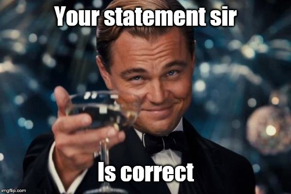 Leonardo Dicaprio Cheers Meme | Your statement sir Is correct | image tagged in memes,leonardo dicaprio cheers | made w/ Imgflip meme maker