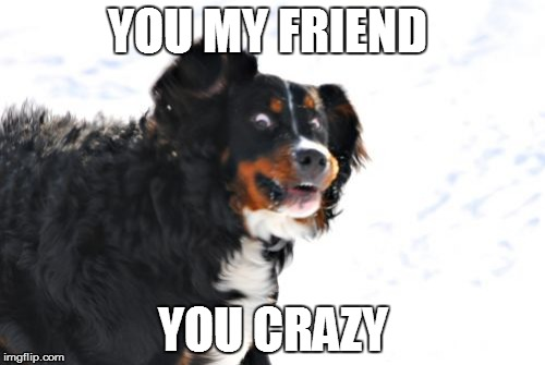 Crazy Dawg | YOU MY FRIEND YOU CRAZY | image tagged in memes,crazy dawg | made w/ Imgflip meme maker