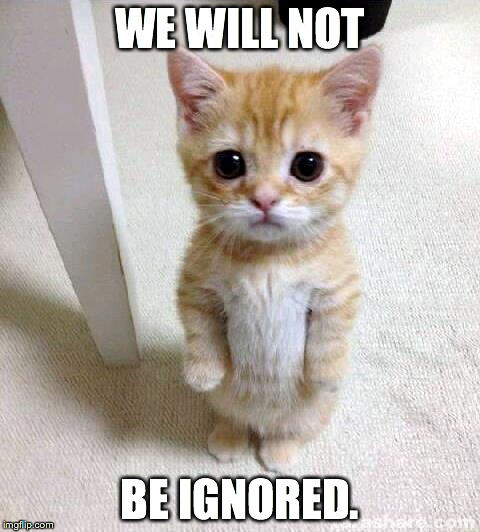 Cute Cats - We Will Not Be Ignored - Imgflip
