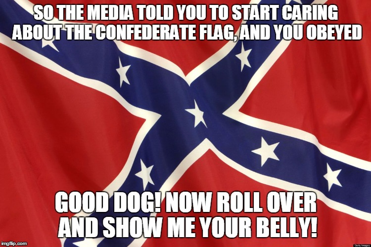 Confederate Flag | SO THE MEDIA TOLD YOU TO START CARING ABOUT THE CONFEDERATE FLAG, AND YOU OBEYED GOOD DOG! NOW ROLL OVER AND SHOW ME YOUR BELLY! | image tagged in confederate flag | made w/ Imgflip meme maker