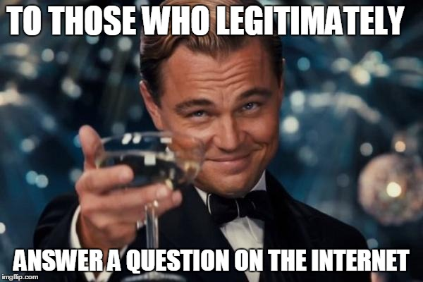 Leonardo Dicaprio Cheers Meme | TO THOSE WHO LEGITIMATELY ANSWER A QUESTION ON THE INTERNET | image tagged in memes,leonardo dicaprio cheers | made w/ Imgflip meme maker