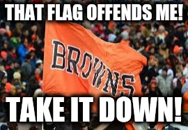 THAT FLAG OFFENDS ME! TAKE IT DOWN! | image tagged in browns | made w/ Imgflip meme maker