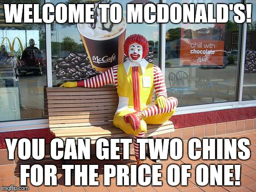 mcdonalds | WELCOME TO MCDONALD'S! YOU CAN GET TWO CHINS FOR THE PRICE OF ONE! | image tagged in mcdonalds | made w/ Imgflip meme maker