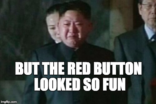 Kim Jong Un Sad | BUT THE RED BUTTON LOOKED SO FUN | image tagged in memes,kim jong un sad | made w/ Imgflip meme maker